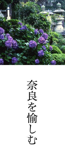 奈良を「楽しむ」